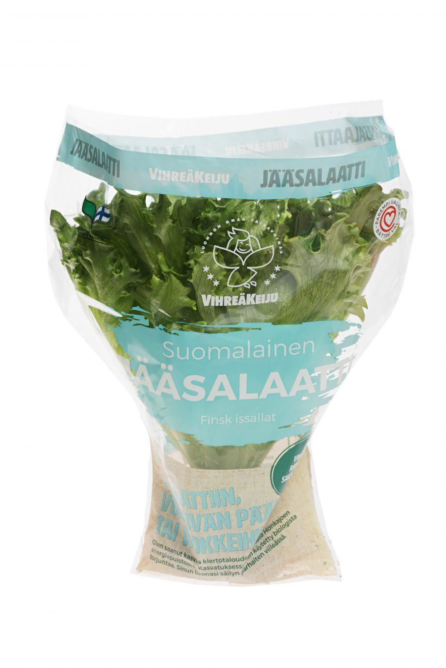 Vihreäkeiju jääsalaatti, ruukku
